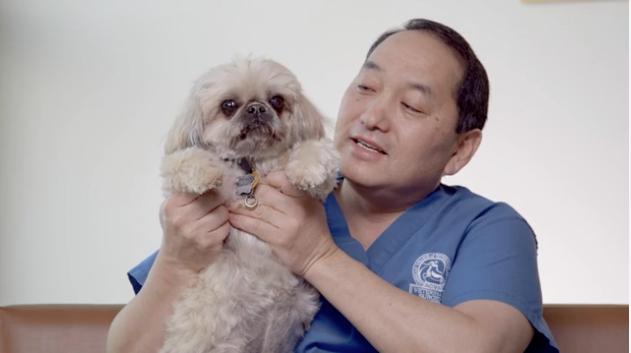 Mid-Atlantic Veterinary Specialists